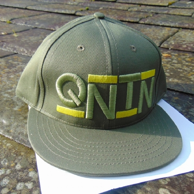 Quintin Co Snapback Business Green